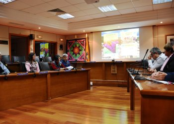 Presentation in the Town Council