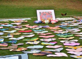 Heart Pillows in Paloma Park